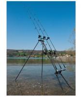 Daiwa D-pod m. Storm-Poles Buzzer
