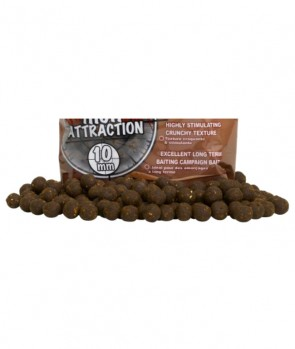 Starbaits Concept Boilies Spicy Salmon 14mm 250g (+/- 5g)