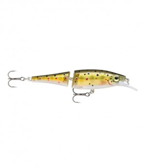 Rapala Bx Jointed Minnow BXJM09 TR