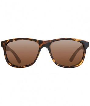 Korda Classic Sunglasses Kornjačin Oklop Okvir / Smeđe Leće