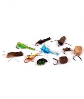 Nash Zig Bugs